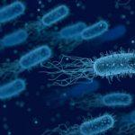 Učinkoviti ukrepi proti nalezljivim boleznim